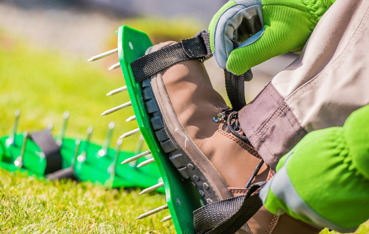 Spiked-Aerator-Shoes.-Men-Aerating-His-Lawn-Strapping-on-These-Spiked-Shoes-and-Taking-a-Stroll-Across-His-Yard
